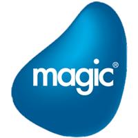 Magic CRM Partner